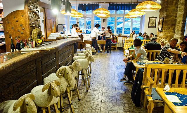 Restaurace s ovečkami