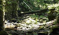 Rokle Satinského potoka
