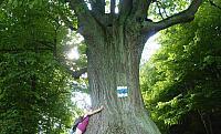 Památný strom